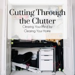 cutting through the clutter, the busy girl blog